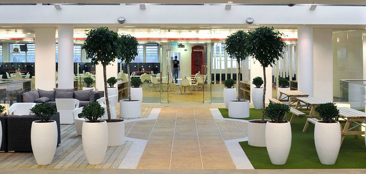 Image result for văn phòng xanh green office